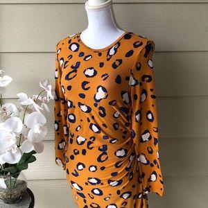 Beautiful Leopard Print Fall Dress